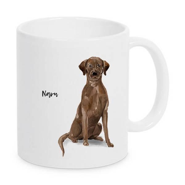 kopp-labrador-brun